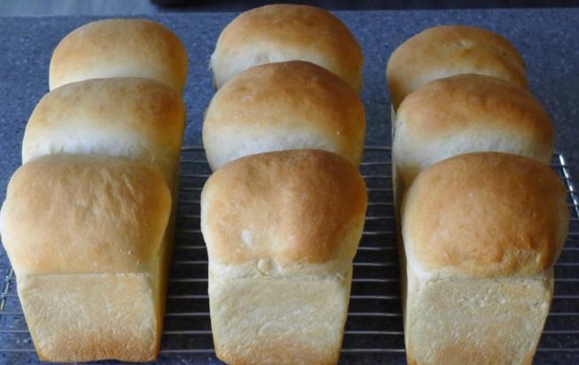 호박 고구마 식빵 만들기