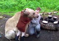 거대한 곰과 함께캠핑하는 가족