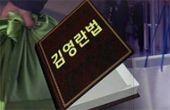 김영란법이 뭐길래,  헌재엔 왜 갔을까