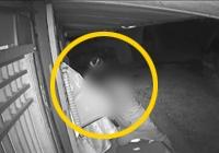 중증장애인 돈 8000만원훔친 범인, CCTV에 딱걸려···