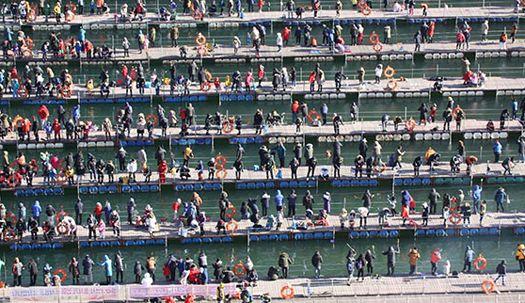 산천어 축제 '물 반 사람 반'