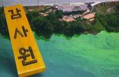 """절차 따지더니···감사원 """"4대강 감사 준비 본격 착수"""""""