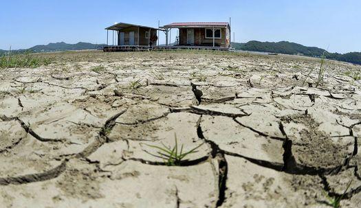 사진으로보는 거북등 저수지,흙 날리는 논밭