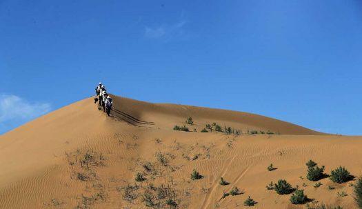네이멍구  쿠부치 사막, 희망의 숲 가꾸기