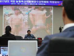 '바리바게뜨' '극한도전'···무단으로 베끼는 中 기업들