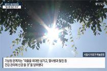 """올해 첫 서울 폭염 경보…""""열사병·탈진 주의"""""""