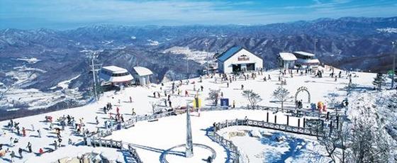 휘닉스파크, 겨울 스키 시즌권 판매 개시