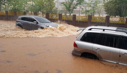 휴일 돌풍·벼락·폭우... 비 피해도 잇따라