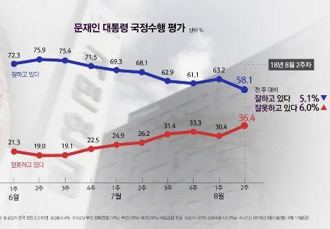 [11초 뉴스] 문 대통령 지지율 변화 (6월 1주~8월 2주)