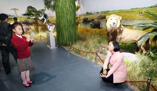 '바드민돈'하고 동물원가고,  평양의 일상 모습