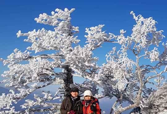 [서소문사진관]나무엔 눈꽃, 하늘은 쪽빛. 눈과 상고대가 만들어낸 지리산의 겨울 풍경