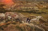 1억 년 전 공룡 뛰놀던 땅 유네스코가 인정한 비경