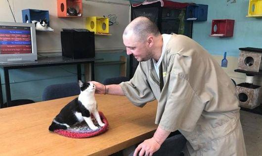 '고양이와 죄수' 함께 사는 교도소 화제