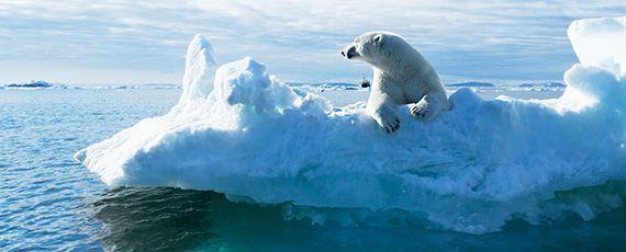 기후변화 앞으로 10년이 마지막 기회