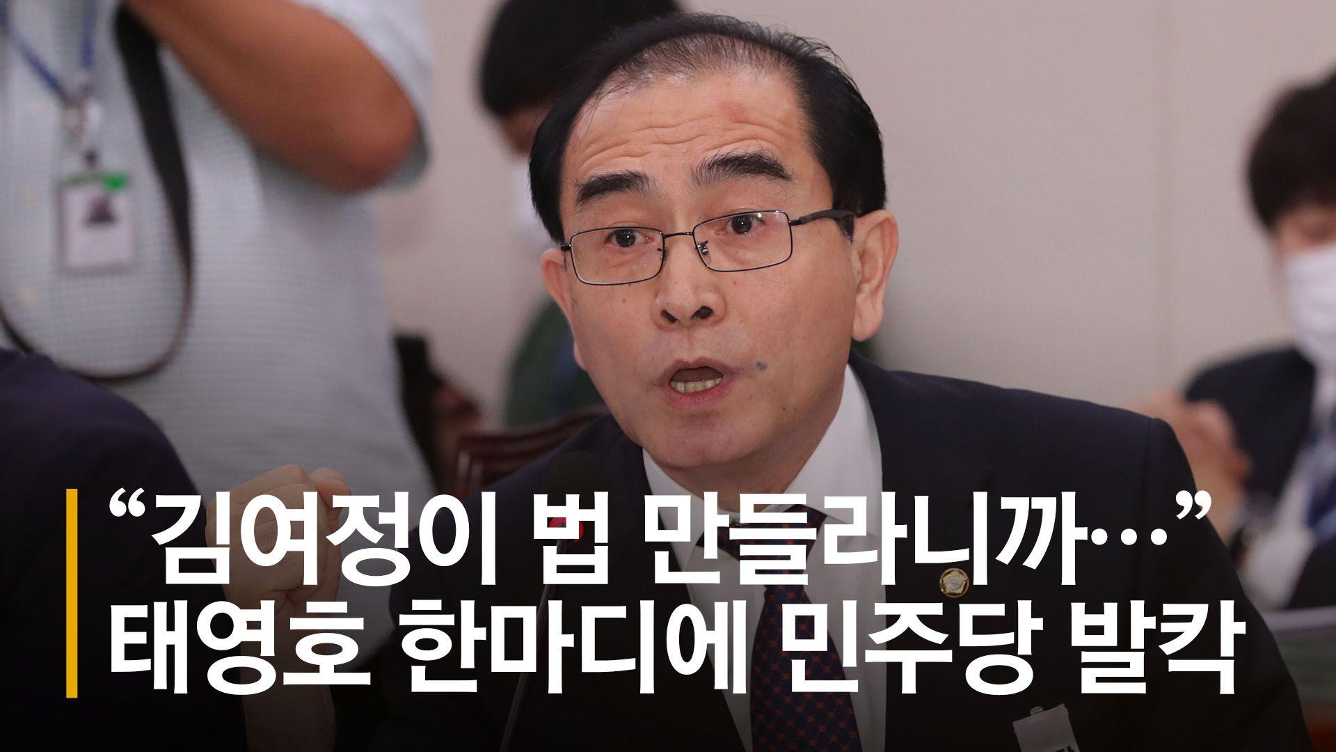 """""""김여정 지시로 법 만드나"""" 태영호 한마디에 설전 오간 여야"""