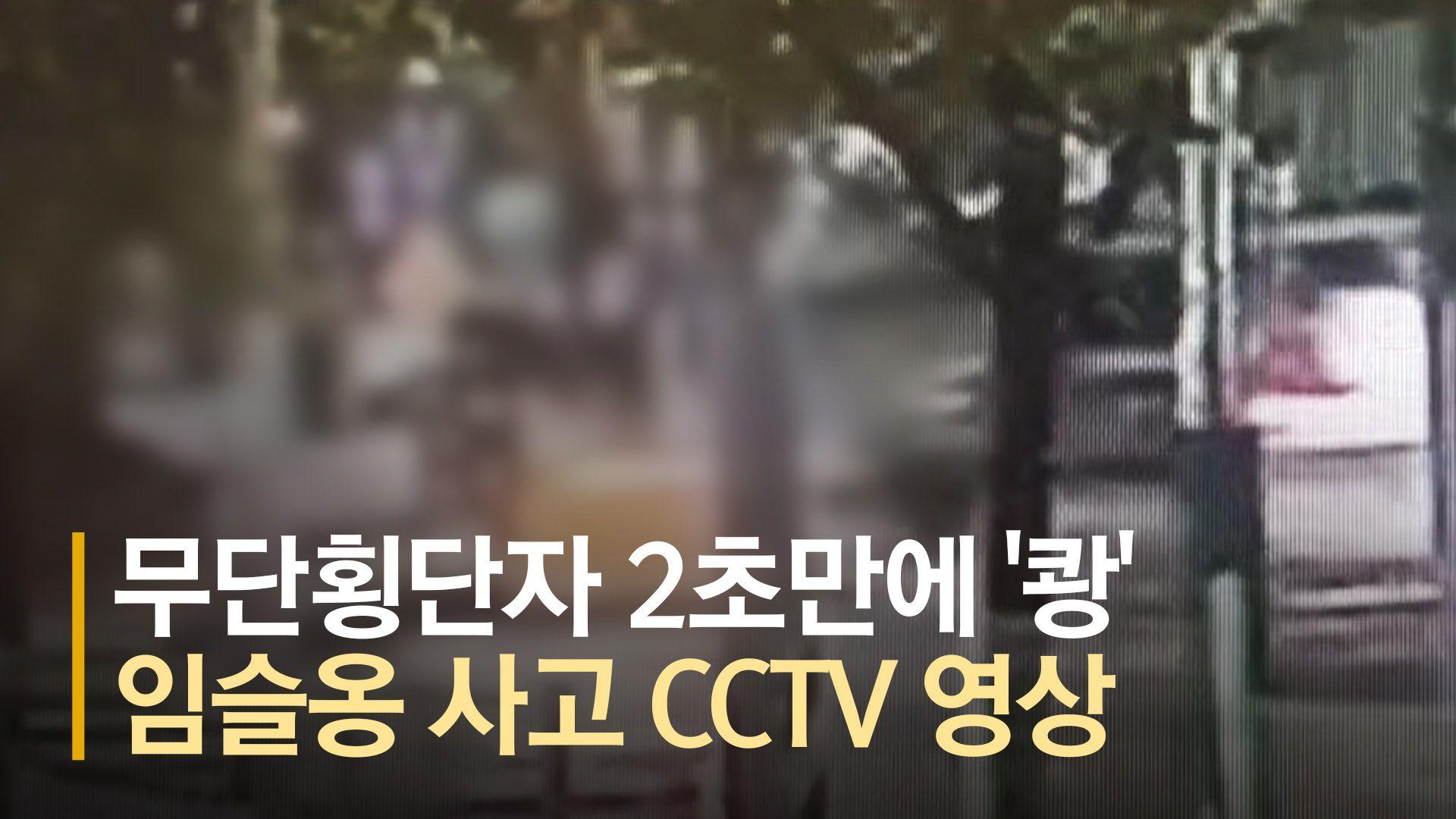 무단횡단자 2초만에 '쾅'···임슬옹 사고 CCTV 영상