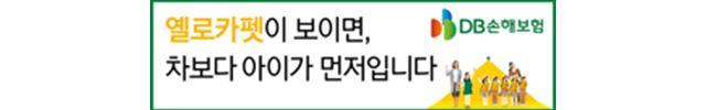 11월 25일 DB 손해보험 옐로카펫 배너 광고