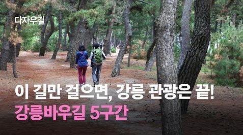 이 길만 걸으면 강릉 관광 끝! 강릉바우길 5구간