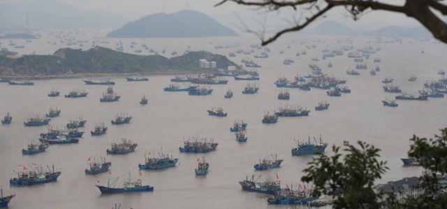 중국이 참치 맛에 눈뜨자남태평양 사모아 어부 눈물