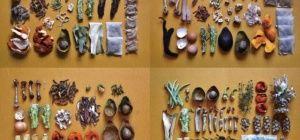 음식물 쓰레기로 음식 담는 그릇 만든 디자이너