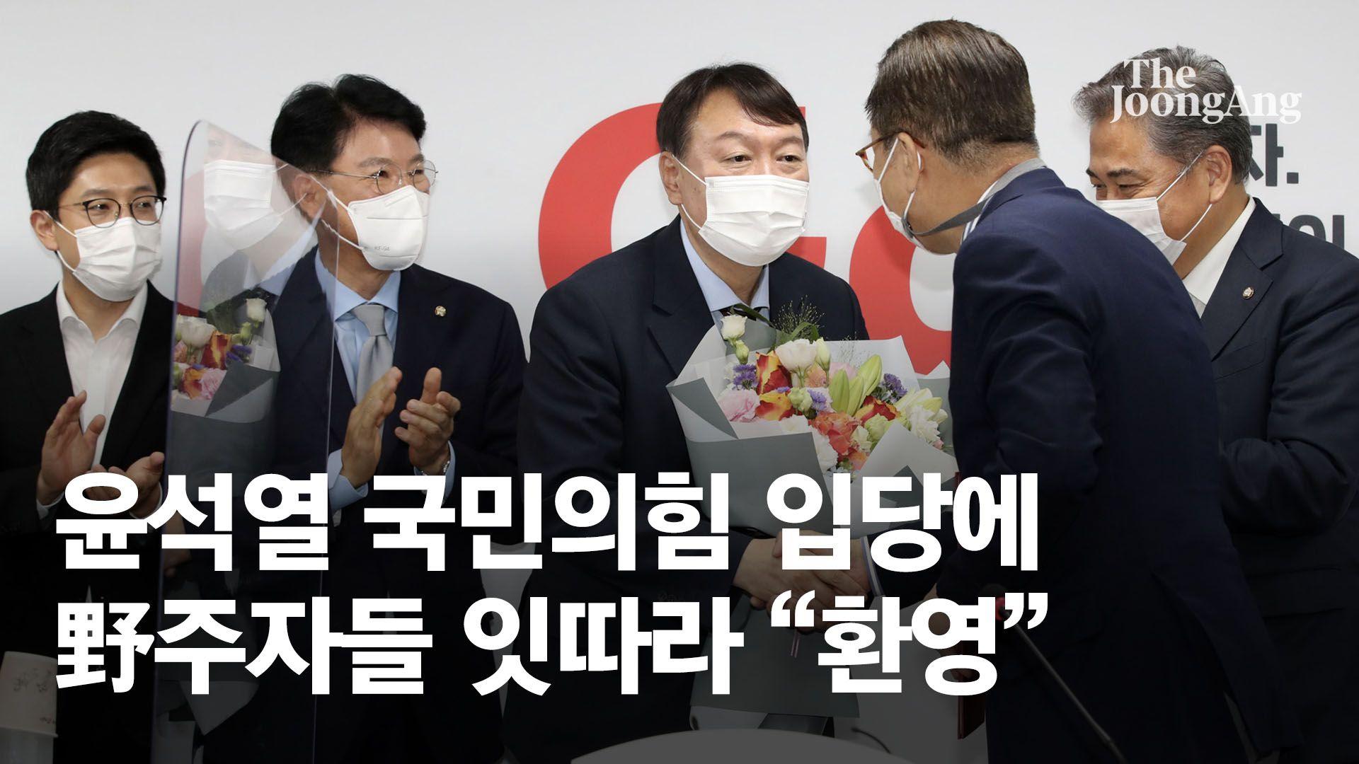 """전여옥 """"윤석열 아니었다면 조국이 민주당 대선후보 0순위"""""""